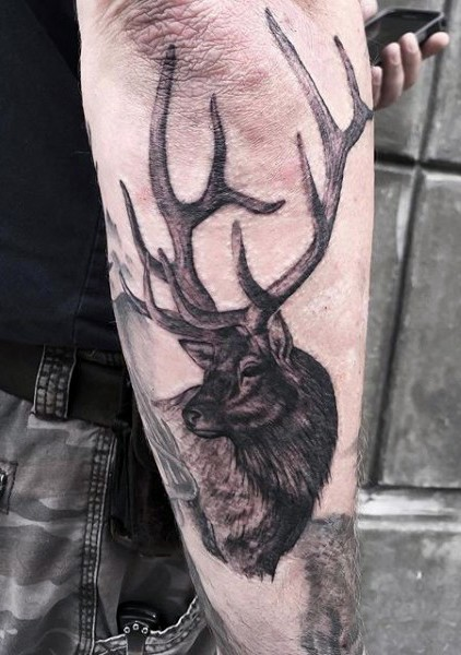 Realism style colored forearm tattoo of big deer