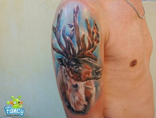 Realism style colored shoulder tattoo of old deer