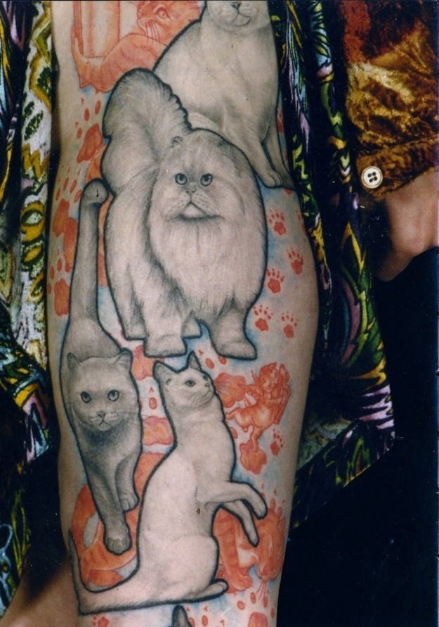 Realism style colored sleeve tattoo of funny cats