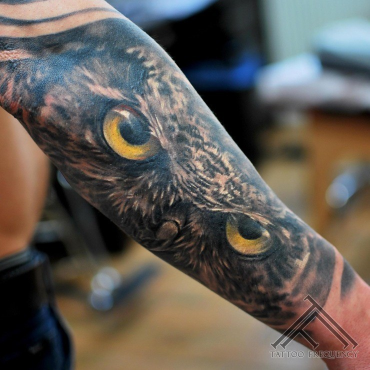 Realism style colored very detailed owl tattoo of forearm