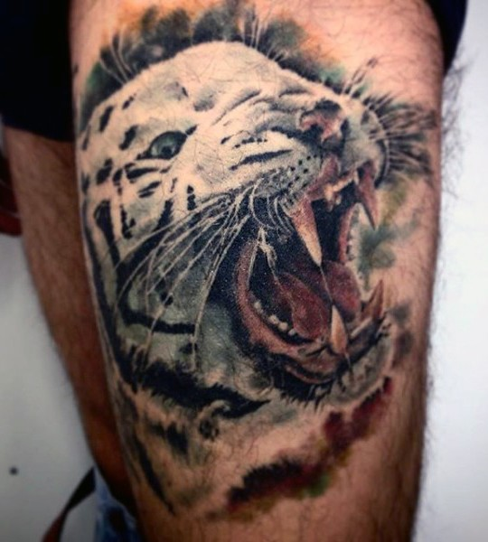 Realism style colorful thigh tattoo of white tiger