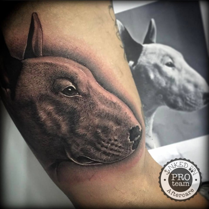 Realism style very detailed biceps tattoo of dog portrait