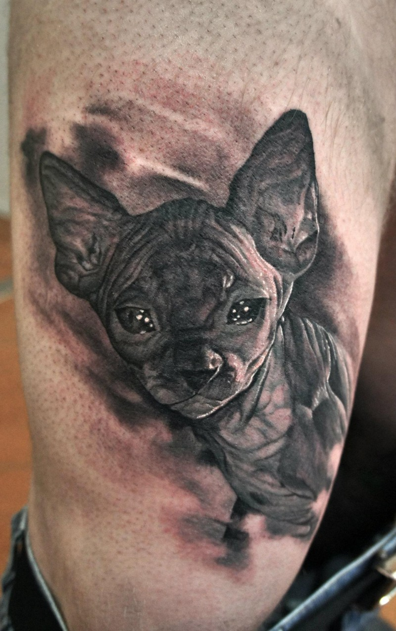 Realism style very detailed thigh tattoo of Egypt cat