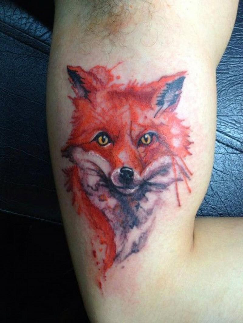 Great fox pictures - Part 7 - Tattooimages.biz
