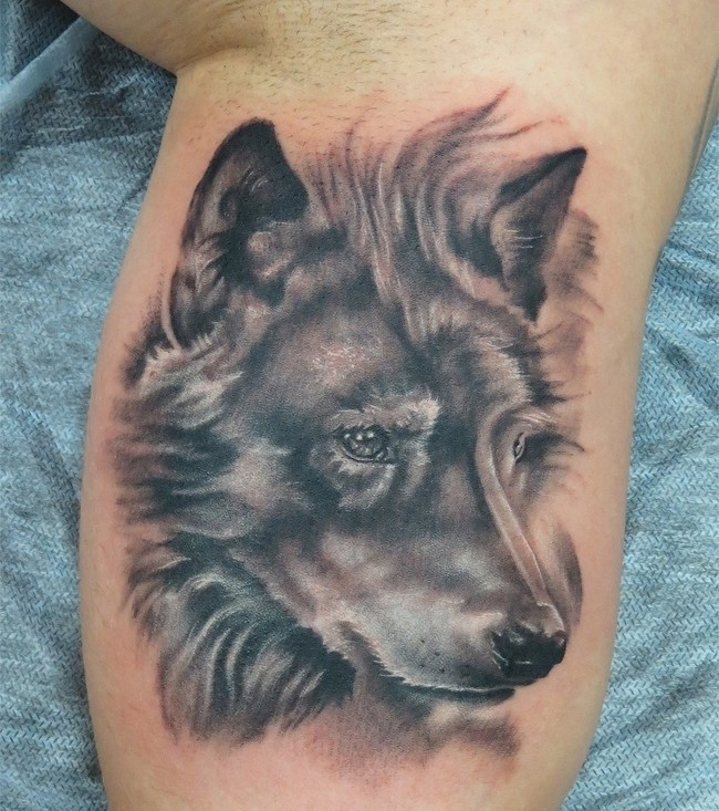 Excellent wolf ideas part 16 for Wolf head tattoos
