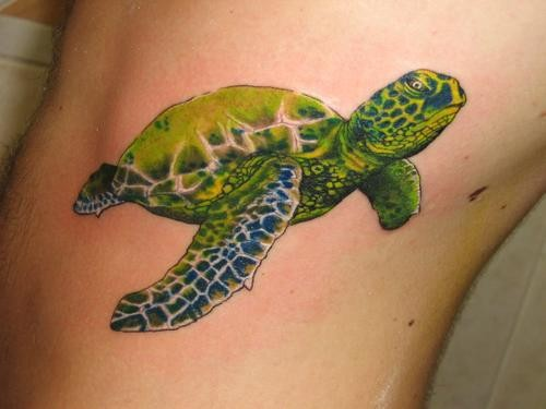 Realistic green turtle tattoo on side