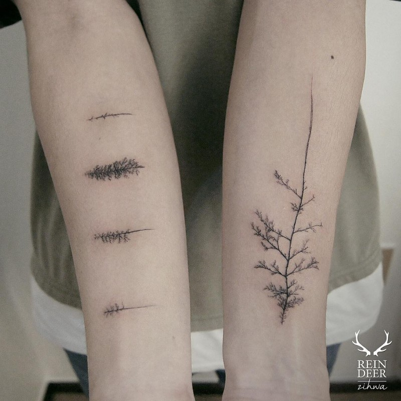 Realistic looking black ink designed by Zihwa forearm tattoo of various trees