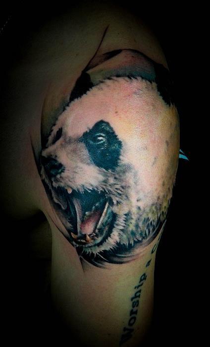 Tatuaggio realistico sul deltoide la testa del panda con la bocca spalancata