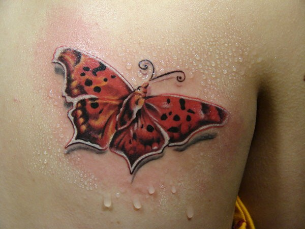 Red butterfly by scottytat