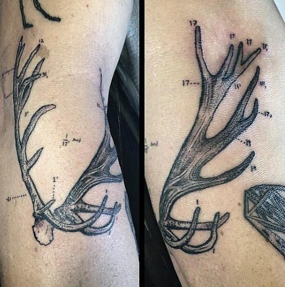 Science style black ink arm tattoo of market deer horn
