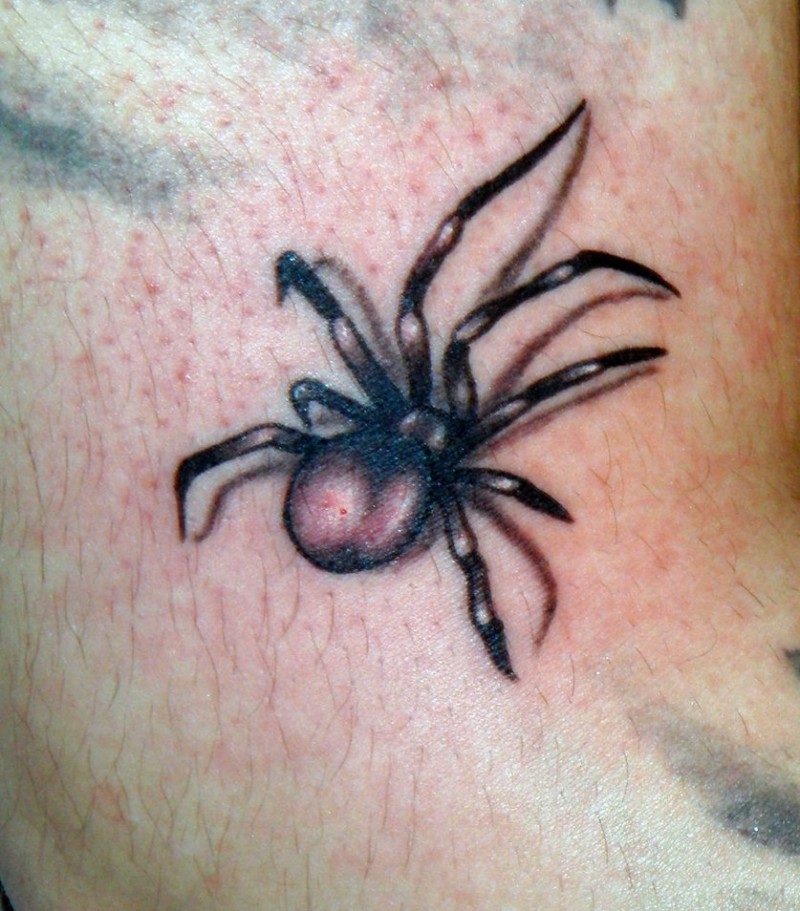 Simple designed 3D black and white little spider tattoo on arm