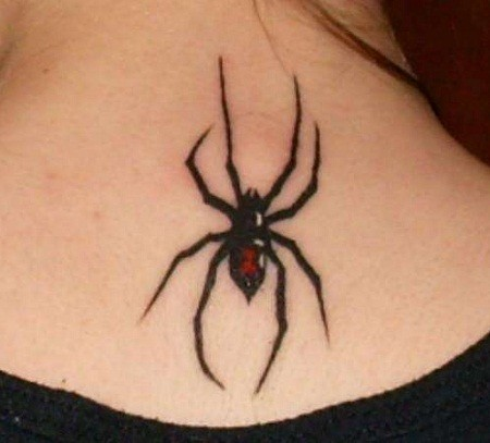 Simple painted little colored spider tattoo on neck