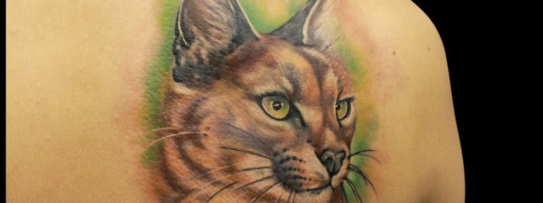 Simple realistic painted and colored wild cat tattoo on shoulder