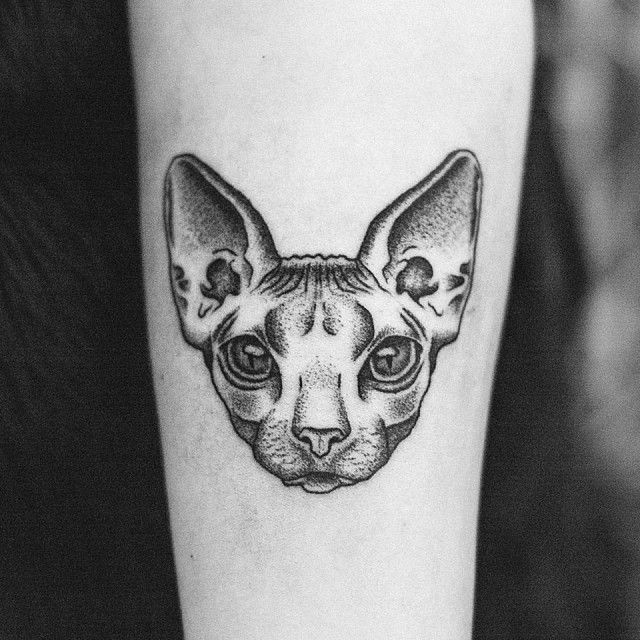 Small dot style forearm tattoo of sphinx cat head