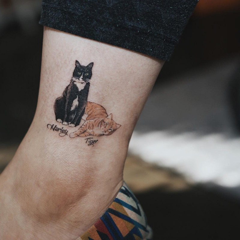 Small for girls like colored arm tattoo of cats couple with lettering