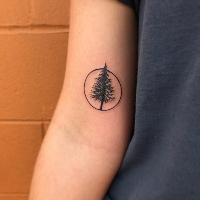 Small size pine tree in circle black ink tattoo on biceps