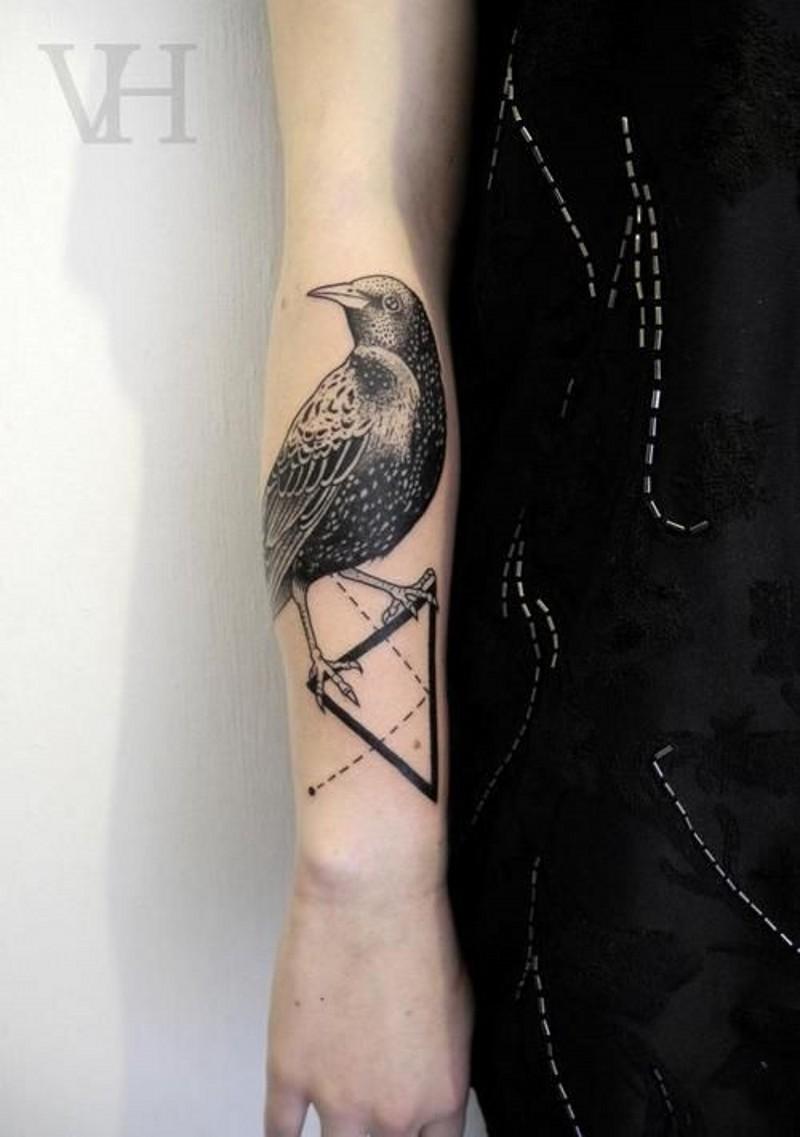 stupendo realistico uccello con triangolo tatuaggio su braccio