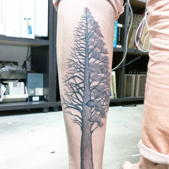 Stylish colored detailed big tree tattoo on leg zone