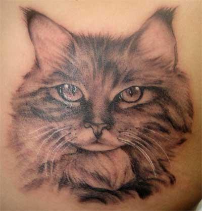 Super realistic cat tattoo