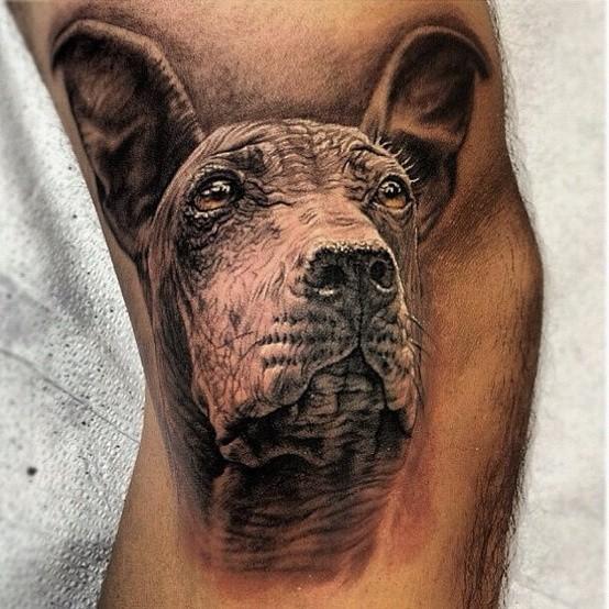 Tatuaggio molto realistico la testa del cane
