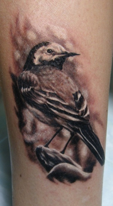 Super realistic sparrow tattoo
