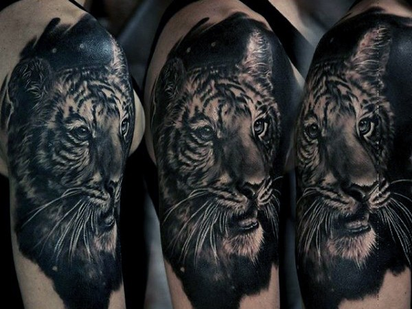 Superior 3D style colored realistic tiger tattoo on shoulder