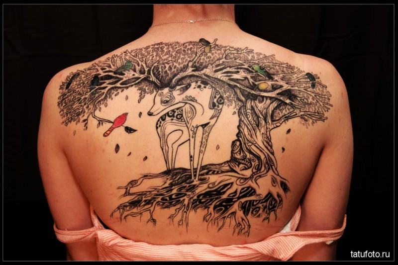 Sweet looking colored back tattoo of deer with tree and bird