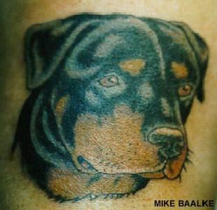 Rottweiler dog qualitative tattoo