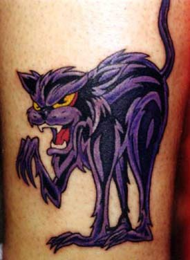 Angry purple cat in atack