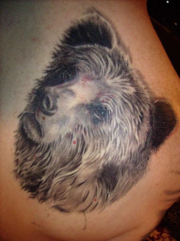 Tatuaje realistico oso pardo