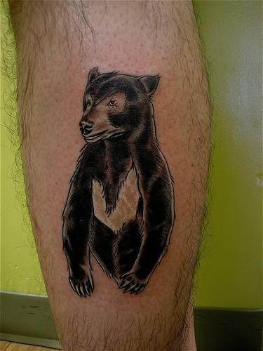 orso nero tatuaggio sulla damba