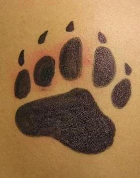 zampa di orso stampata tatuaggio