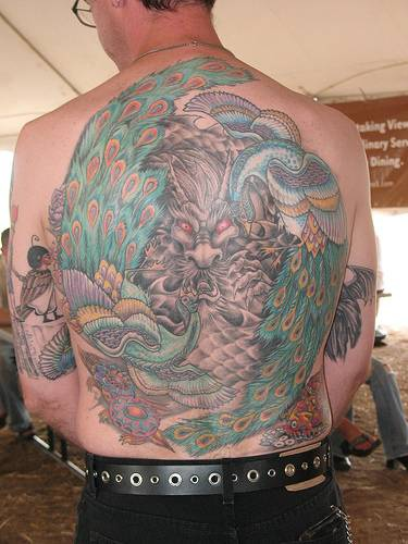 Large peacock tattoo on whole back