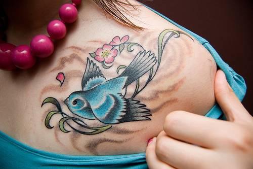 Little blue sparrow on shoulder