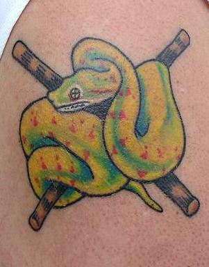 Tatuaggio colorato il serpente verde giallo