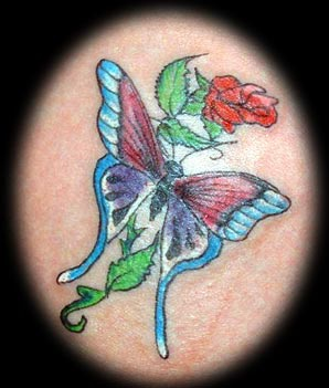 Beautiful butterfly on rose tattoo