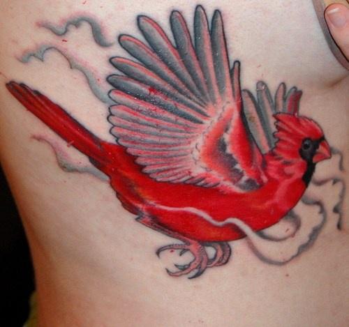 Red cardinal bird in mist