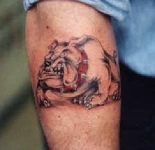 Spike dog arm tattoo