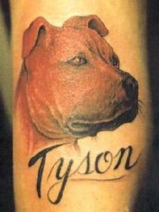 Tison dogo argentino memoriale tatuaggio