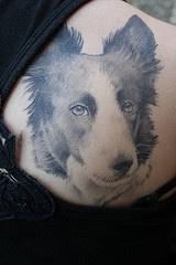 lessie collie cane tatuaggio