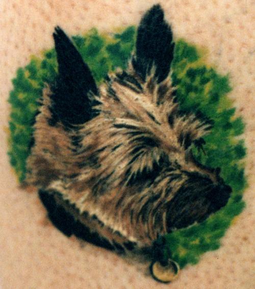 giocatolo cane terrier colorato tatuaggio