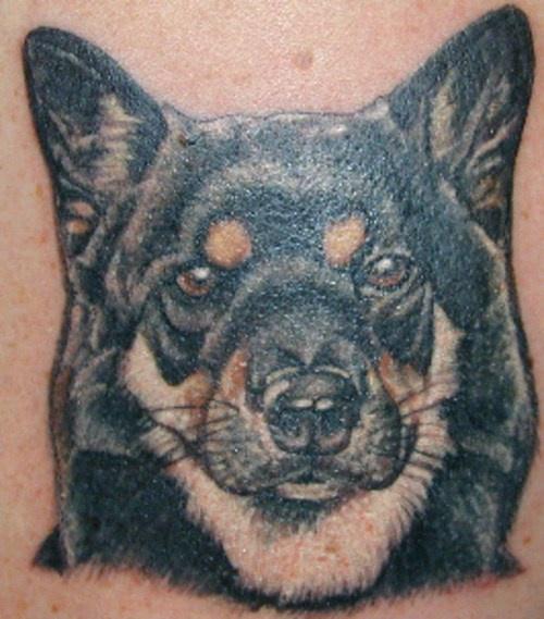 collie cane tatuaggio colorato