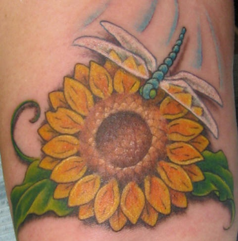 Dragonfly on sunflower tattoo in colour