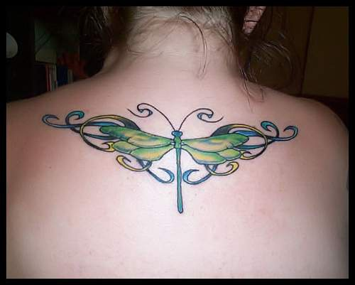 Green dragonfly with tracery tattoo on back