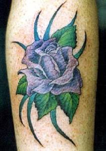 Elegant purple rose in greens