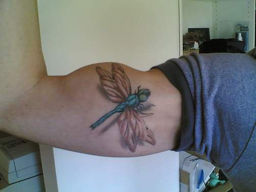 3d dragonfly with shadow tattoo