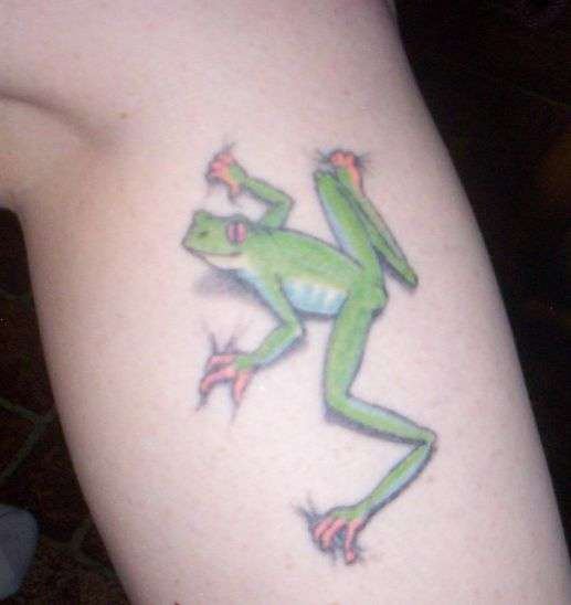 Realistic small green frog on leg