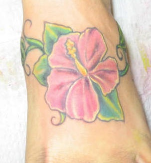 Pink hibiscus flower on foot