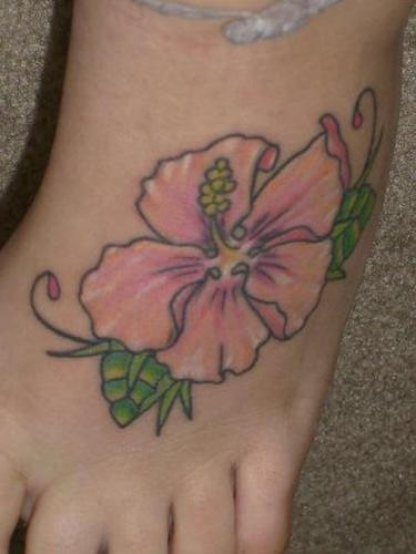 Elegant pink hibiscus on foot