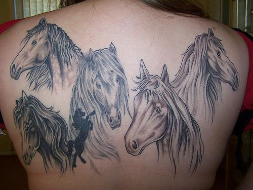 Bunch of horses on back